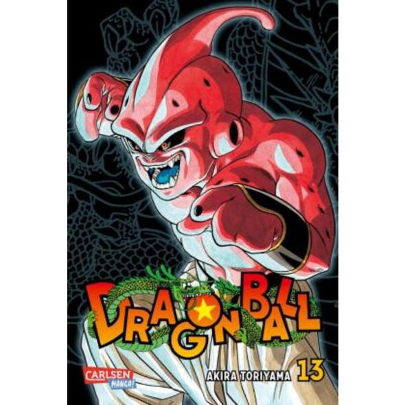 Dragon Ball Massiv 13
